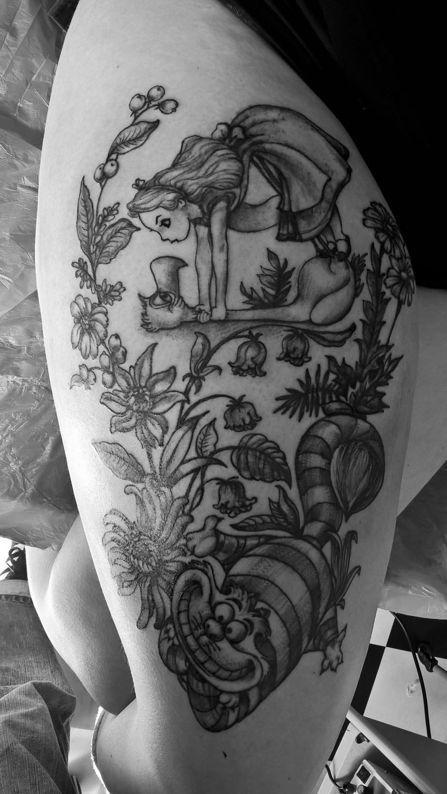 tattoo kuk, alice in wunderland